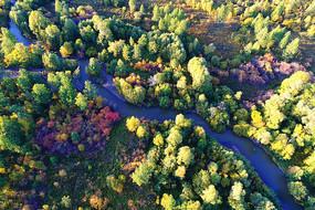 大兴安岭秋季密林小河
