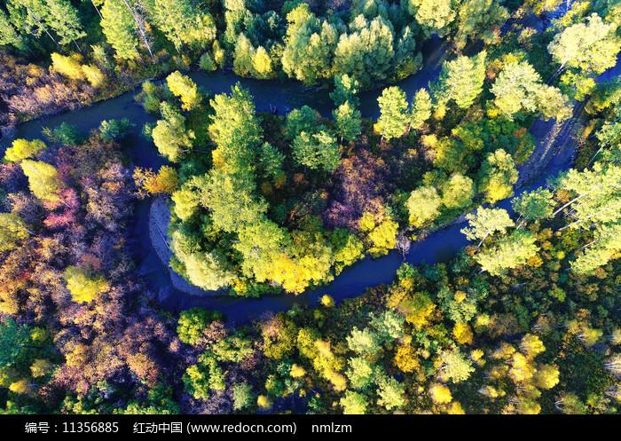 大兴安岭秋季森林河流彩林图片