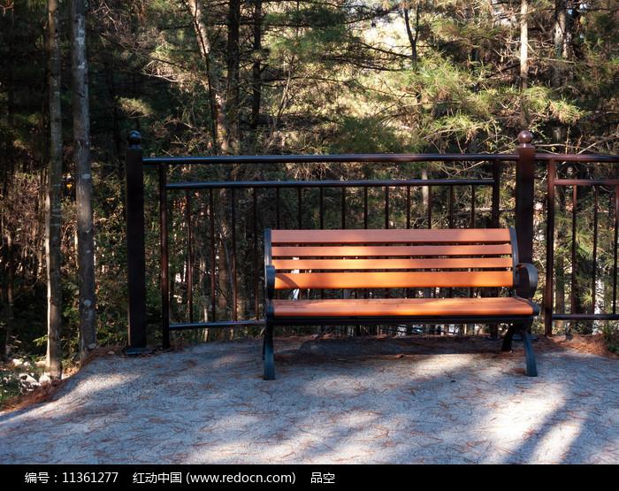 森林里一把空着的条椅图片