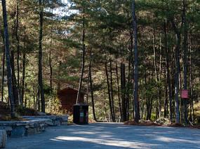 森林中的休闲健身场地