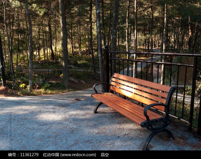 森林中的休闲靠椅图片