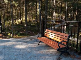 森林中的休闲靠椅