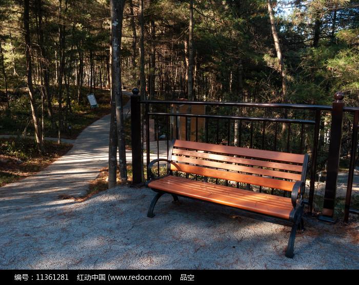 阳光森林和靠椅图片