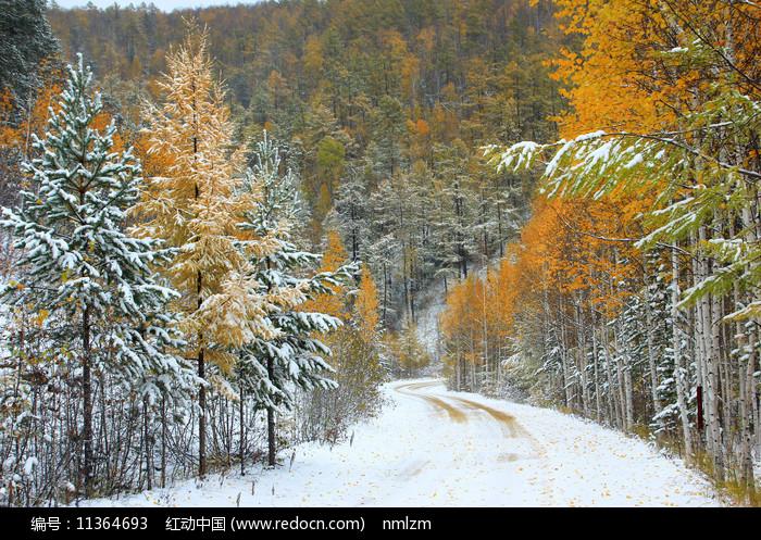 大興安嶺秋季雪林山路圖片
