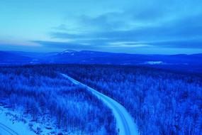 林海雪原樹林山路霧凇