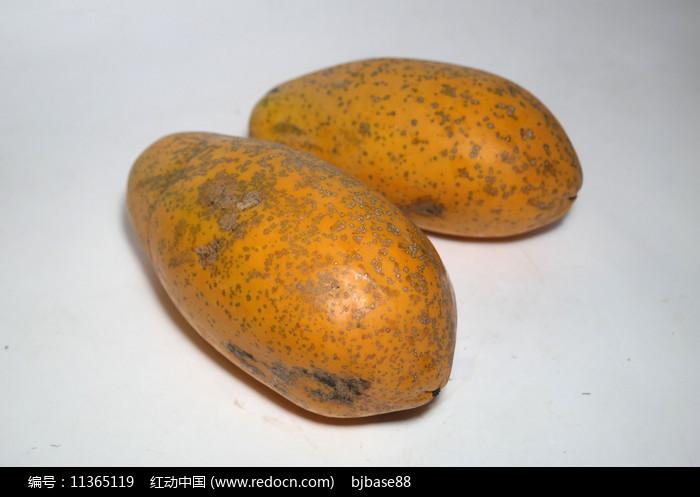 大木瓜图片