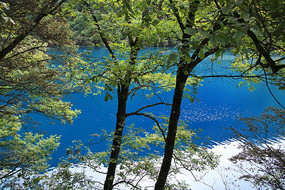 九寨溝綠林藍海