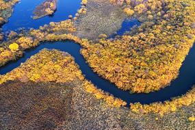 航拍彩色树丛河湾风景