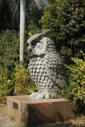 深圳野生动物园石雕猫头鹰