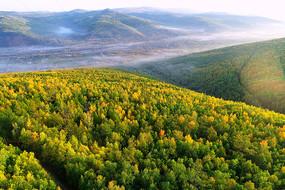 大兴安岭林区秋季林海晨雾