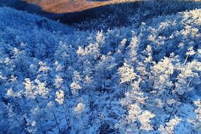 大兴安岭林海雪原风景(航拍)
