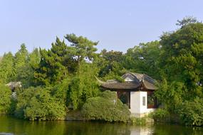 上海古猗園鴛鴦湖及茗軒