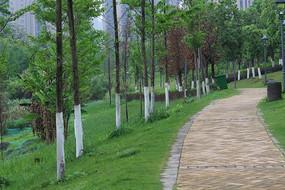 信丰县花园湾休闲马路