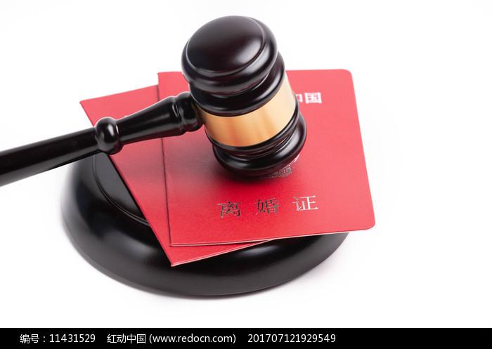 法槌下的离婚证图片