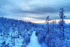 大兴安岭冬季原始森林山路