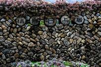 多肉石头墙