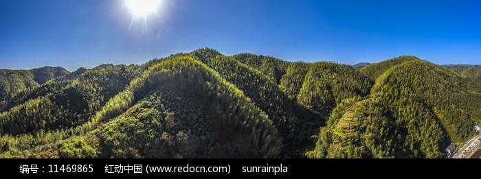 宽幅大山竹海蓝天摄影图图片