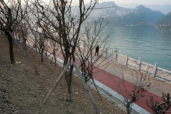 三峡水库之巫山新城库岸绿化带