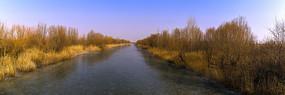 宽幅济西国家湿地公园冬景
