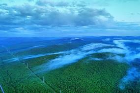 大兴安岭绿色林海夜雾迷漫