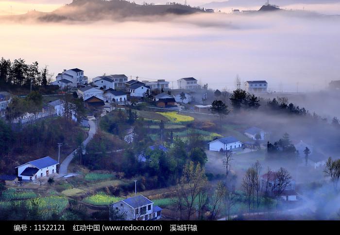 乡村晨雾图片
