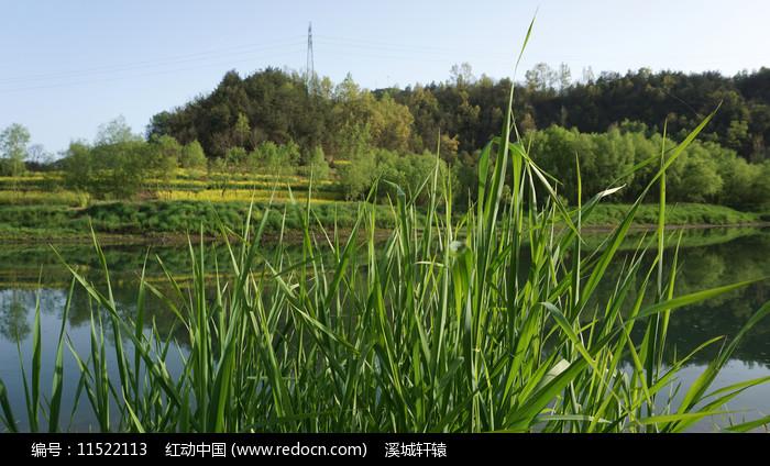 阳坡寨县河图片