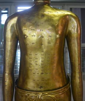 古代中医针灸铜人胸腹经络穴位