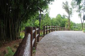 竹林旁马路