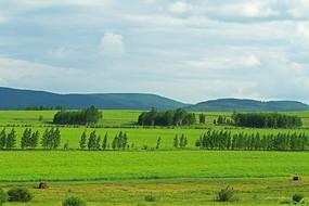 绿色原野田野