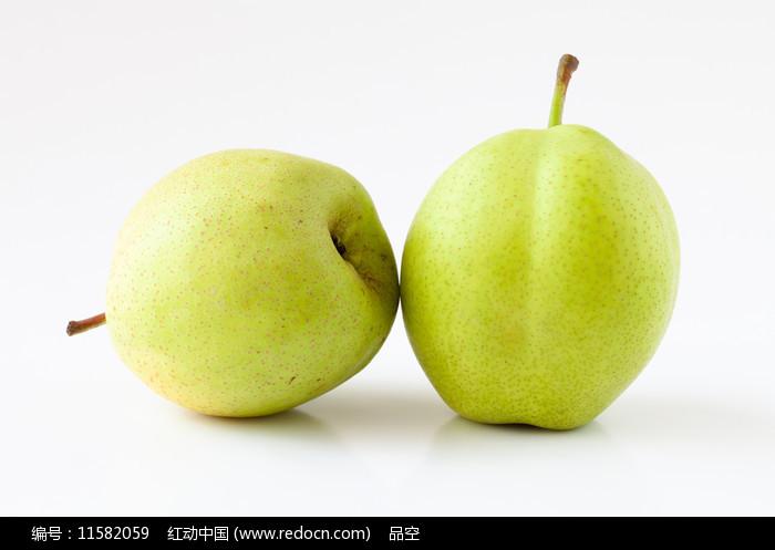 白背景上的应季水果早酥梨图片