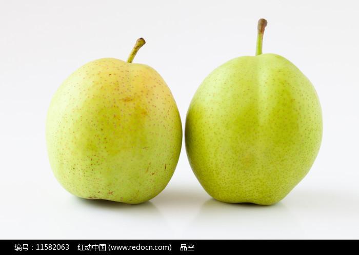 白背景上酥脆的早酥梨图片