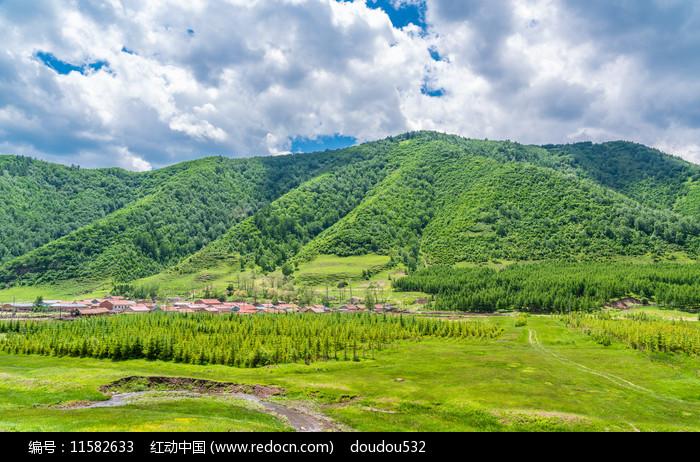 内蒙锡林郭勒草原绿林图片