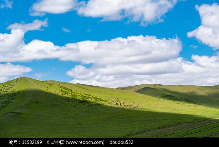 锡林郭勒草原风景图片
