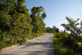 中国西部山区的乡村公路