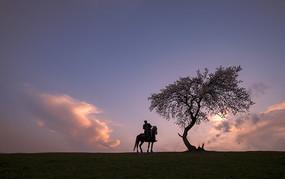 一张骑士剪影图