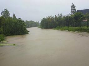 暴雨中河道