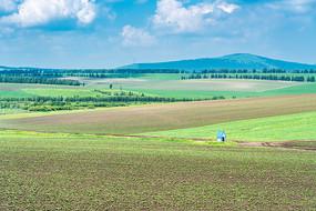 内蒙呼伦贝尔大草原