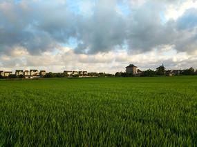 落日乡野景色