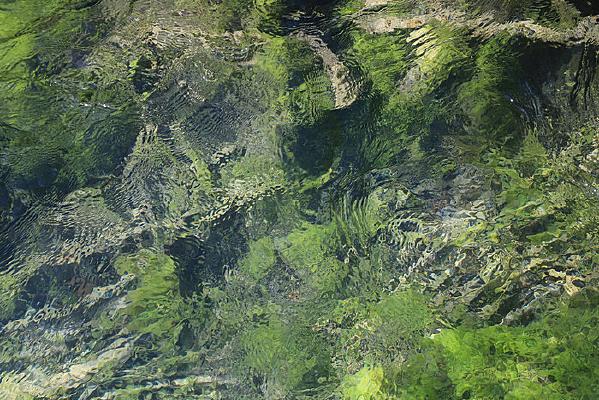 九寨沟清澈水面