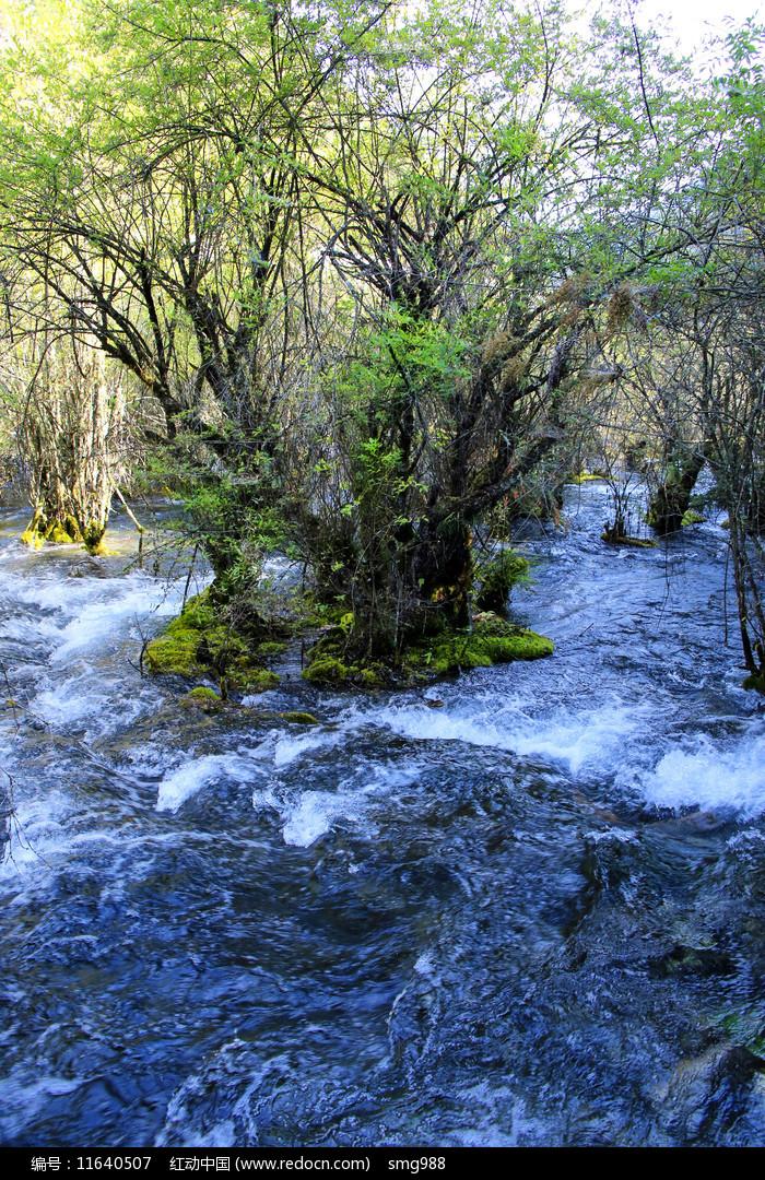 瀑布湍流圖片