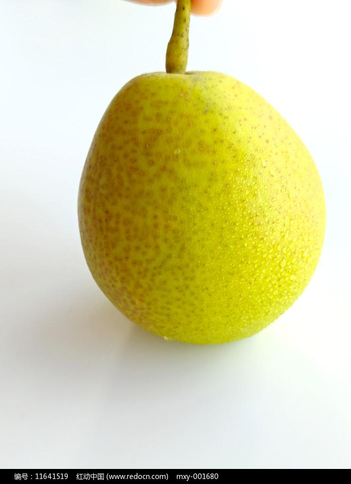 香梨素材圖片