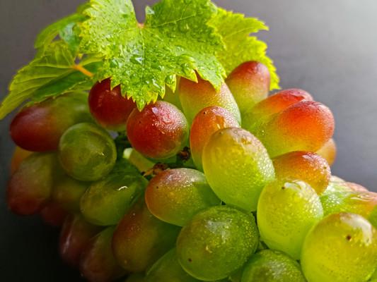 绿翡翠葡萄图片
