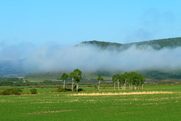 绿色原野山林云雾风景