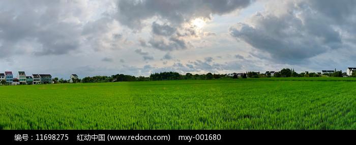 清晨原野全景图图片