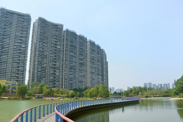 城市公园水景园林湖面观光栈道