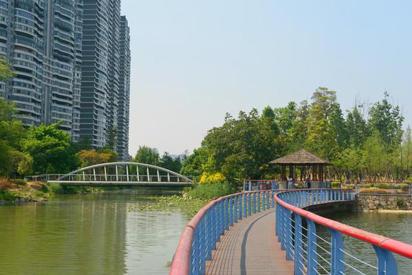 城市公园水景园林湖面小桥
