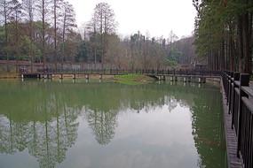 武汉大学风景