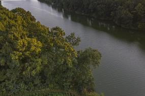 河道树林夕阳