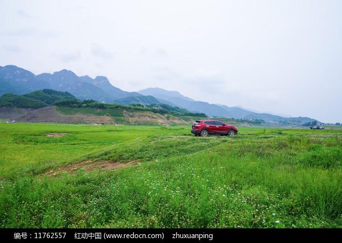 草地汽车图片
