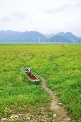 绿江村草地
